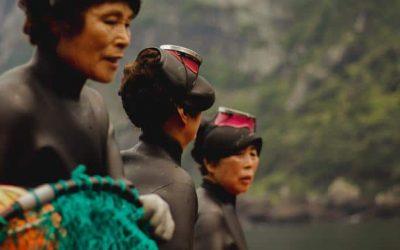 Haenyeo: The inspiring female divers of South Korea